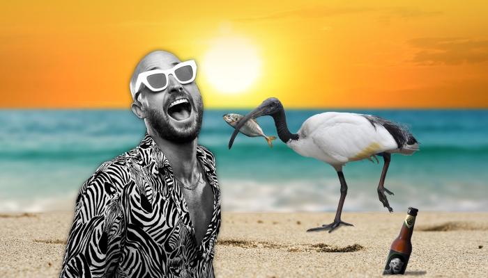 Fisher Australian Beach Party Tour