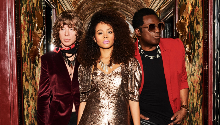 The Brand New Heavies & Dig